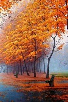 Taką jesień to nawet lubię:)