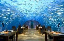 podwodna restauracja, Malediwy
