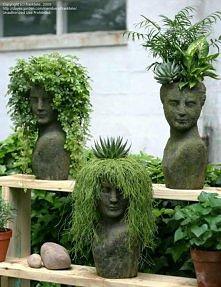 ogrodowe fryzury ;p