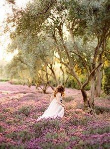 W zaczarowanym ogrodzie