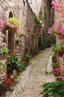 Ulica w kwiatach