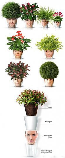 Zielona fryzurka :)