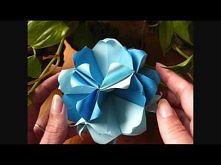 Origami ๖๔ Arabica Kusudama ๖๔
