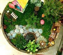 miniaturowy ogród-cudo