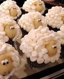 muffinka owca