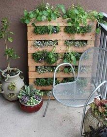 creative garden on the balcony