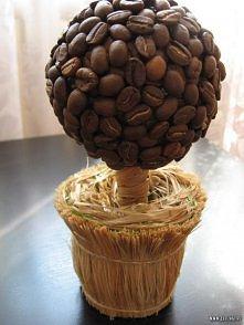 kawowe drzewko