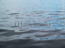 Damien Rice - Cold Water (with lyrics)