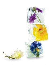 kwiatowe kostki lodu
