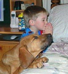 wieczorna modlitwa