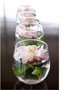 Kwiaty w wodzie