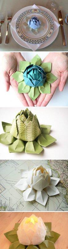 lotos dodatki kwiat