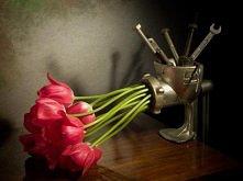 mielone tulipanki