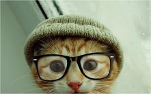 hipster, baby
