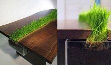 Eco stół :)