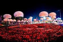 Ogrod Świateł Tajlandia