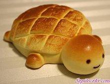 bułeczka żółwik