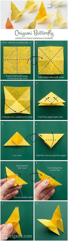 origami - motylek