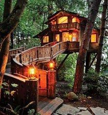 Przepiękny domek na drzewie w Santa Monica, California.