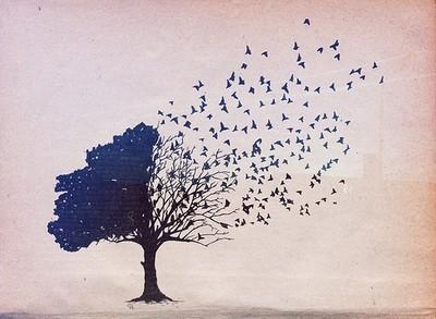 Drzewoptaki Wzór Na Tatuaż Zszywkapl