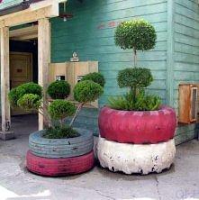 oponowy ogród