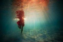 Piękna fotografia podwodna autorstwa Eleny Kalis