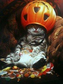 Halloween'cat ;)