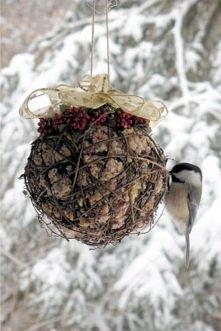 zimowa kula dla ptaków - nasiona wymieszane z tłuszczem, uformowane w kulę.