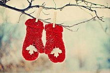 Only 49 days till Christmas! ;)
