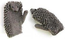 jeżorękawiczki