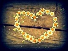"""""""Bo miłość przezwycięży wszystko""""..."""