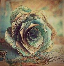 Kwiat z mapy .