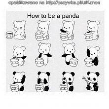 Jak zostać pandą:D^^