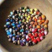 Kolorowe żołędzie.