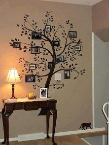 drzewo geologiczne
