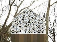 Genialny domek dla ptaków -...