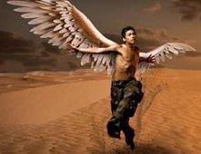 Anioł na pustyni
