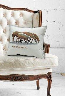 poduszka - owce (proj. Mole)