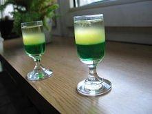 KAKTUS: 1/3 likieru (bądź syropu) miętowego  1/3 soku z cytryny  1/3 tequilli
