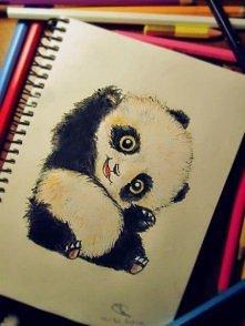 Uwielbiam pandy, są przesłodkie !