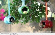 dla ptaszków