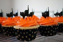 black cat cupcakes halloween