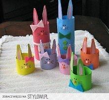 zajczki z rolek