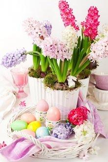 Wielkanoc ♥