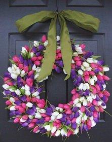 z tulipanów