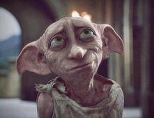 Zgredek od początku wielbił Harry'ego Pottera. Był w stanie ponieść każdą karę, by móc go zadowolić lub w czymś pomóc. Pierwsze, jak i ostatnie słowa, wypowiedziane przez n...