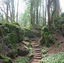 tajemnicze schody