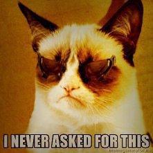 grumpy cat=)
