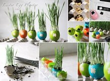 diy, diy projects, diy craft, handmade, diy easter egg planter