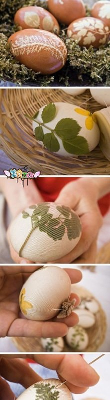 diy, diy projects, diy craft, handmade, diy beautiful egg dye